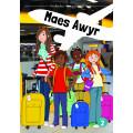 Maes Awyr