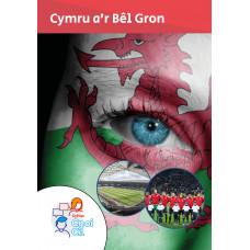 Cnoi Cil: Cymru a'r Bêl Gron