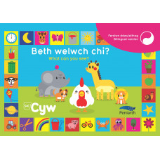 Beth welwch chi? | What can you see?
