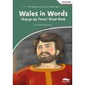 Wales in words – Hopcyn ap Tomos' Great Book