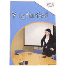 Byw Bywyd - Y cyfarfod