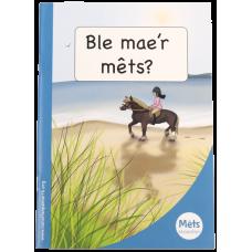 Mêts Maesllan: Ble mae'r mêts?