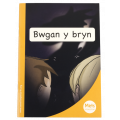 Mêts Maesllan: Bwgan y bryn