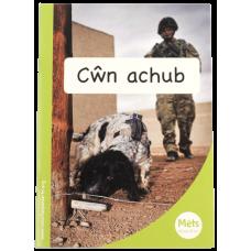 Mêts Maesllan: Cŵn achub