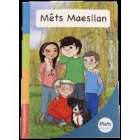 Mêts Maesllan - Llyfr rhagarweiniol